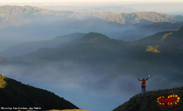 mt. pulag tour