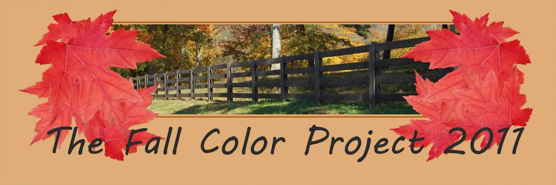 The Fall Color Project