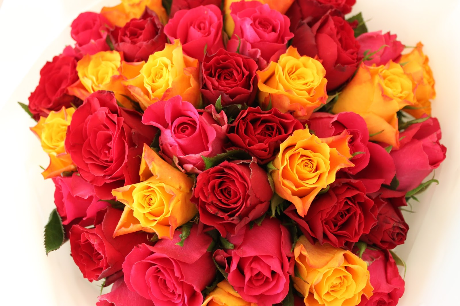 A picture of the Appleyard London 40 Rose Bouquet