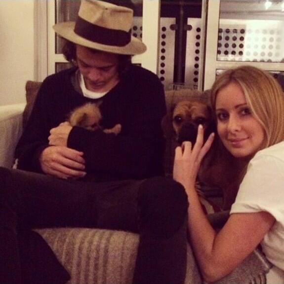 harry styles, harry holding a puppy, harry con in braccio un cucciolo, 27.05.14, london, uk, one direction, 1d