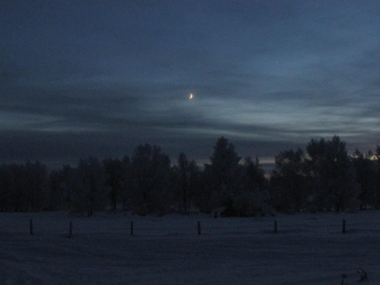 Life and Lizzy♡: Droombestemming: Het wintersprookje Lapland