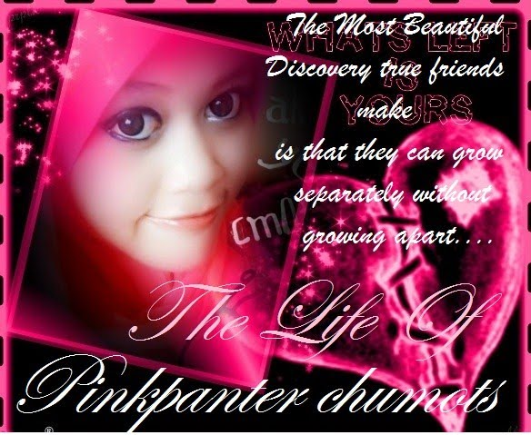ThE LiFe Of PinkPanTer cHuMots