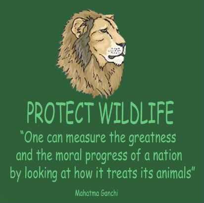 save wild animals essay A large number of people possess the belief that spending money to save the wild animals is a waste of national budget as these animals have almost nothing.