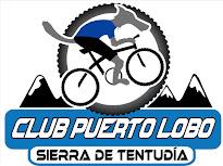Club Deportivo Puerto Lobo