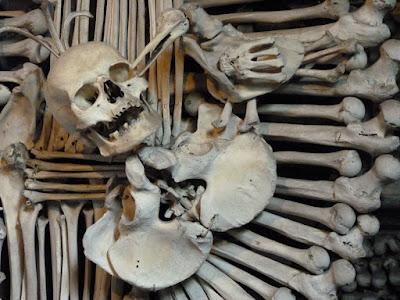 escudo huesos kutna hora