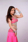 Sneha Ullal Glamorous in Pink Photo shoot-thumbnail-17