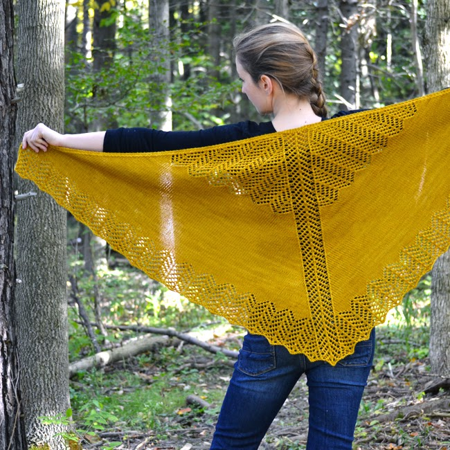 Burning Leaves Shawl Back