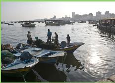 Marina israelí dispara contra embarcación pesquera palestina en costas de Gaza