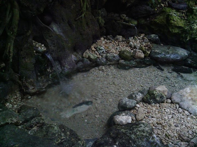 Mata Air Uai Salu Desa Pamboqborang