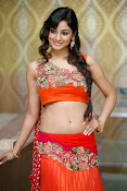 Shilpi Sharma Photos at Trisha Pre launch fashion Show-thumbnail-6