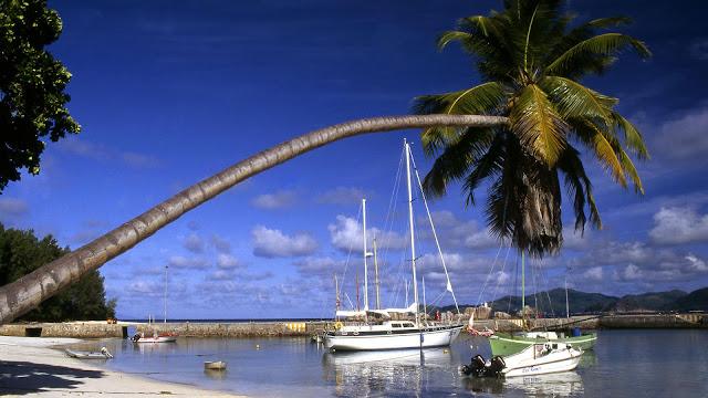 Seychelles Island , Africa