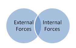 internal external forces for change Internal and external factors influence the internal & external factors they analyze population and diversity change.