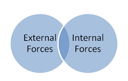 external internal forces essay Essay on internal external factors internal/ external factors of the hershey company jorge mota mgt/230 november 11, 2014 john j o'brien internal/external factors the four functions of management are planning, organizing, leading, and controlling there are a numerous amount of factors that impact these four functions of management.