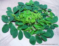 Murungai keerai [ Drumstick leaves ]