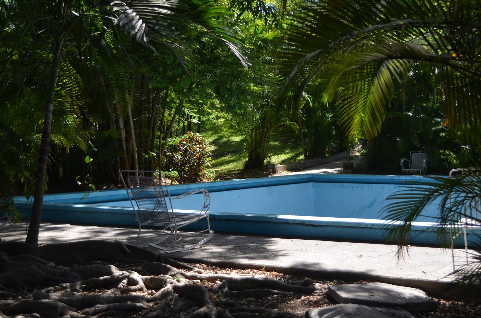 L 39 ann e du jardinier regarder ava gardner se baigner nue for Nue a la piscine