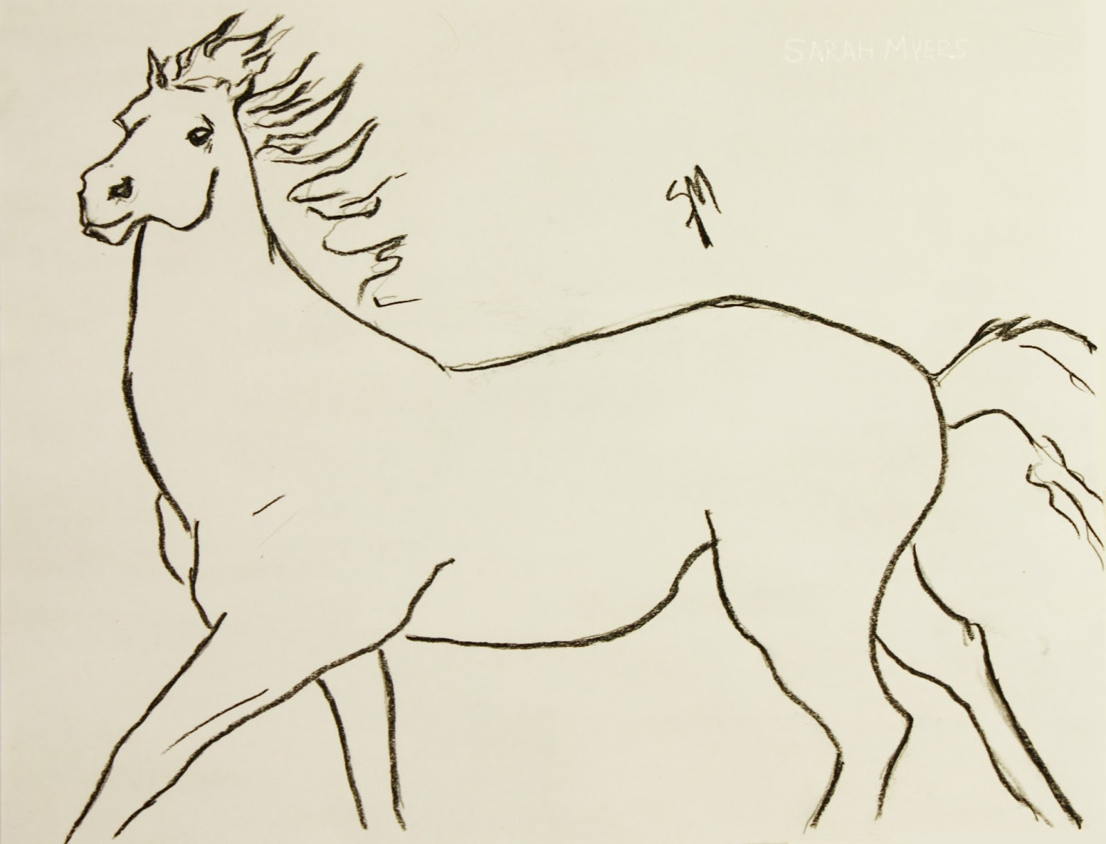 Horse, running, line, drawing, study, sketch, Sarah, Myers, movement, gallop, charcoal, art, arte, minimalist
