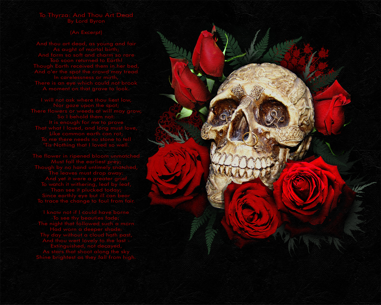 Dark Wallpapers: Skulls Wallpapers