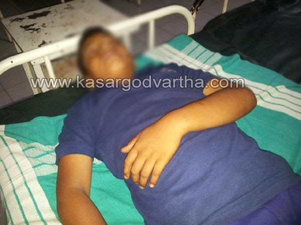 Dog bite, Student, Injured, Kasaragod, Kerala, Mulleria, Injured.