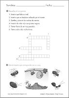http://primerodecarlos.com/SEGUNDO_PRIMARIA/diciembre/Unidad5/fichas/cono/cono8.pdf