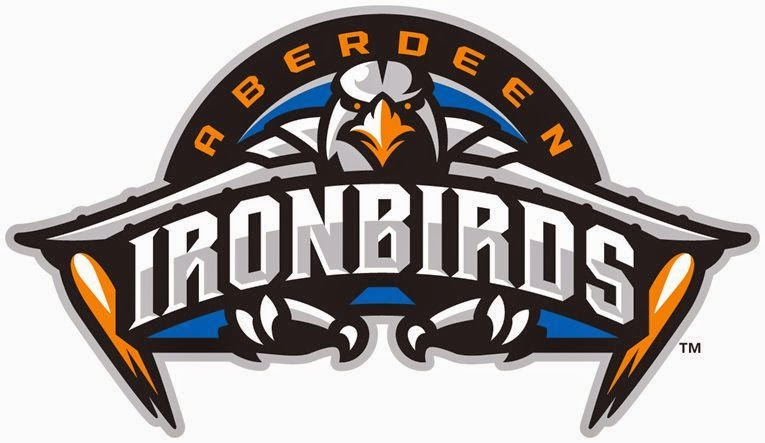 The Birdist Grading Bird Themed Minor League Baseball Teams