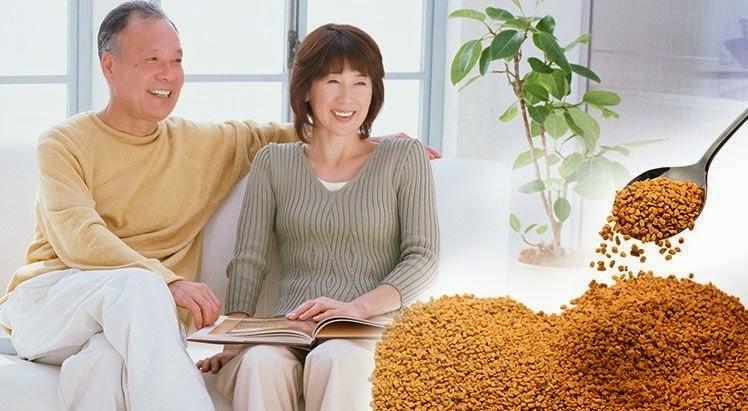 Hạt methi là hạt gì