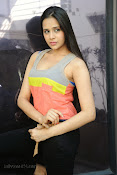 Abha Singhal latest photos at Dil Diwana press meet-thumbnail-10