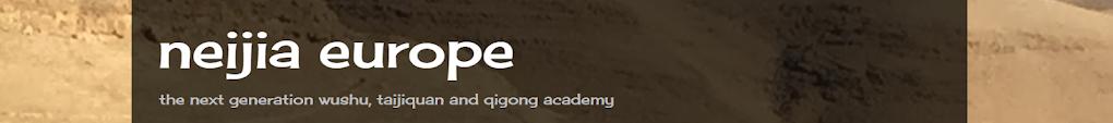 Wushu Academy