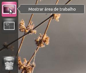 Screenshot ilustrativo