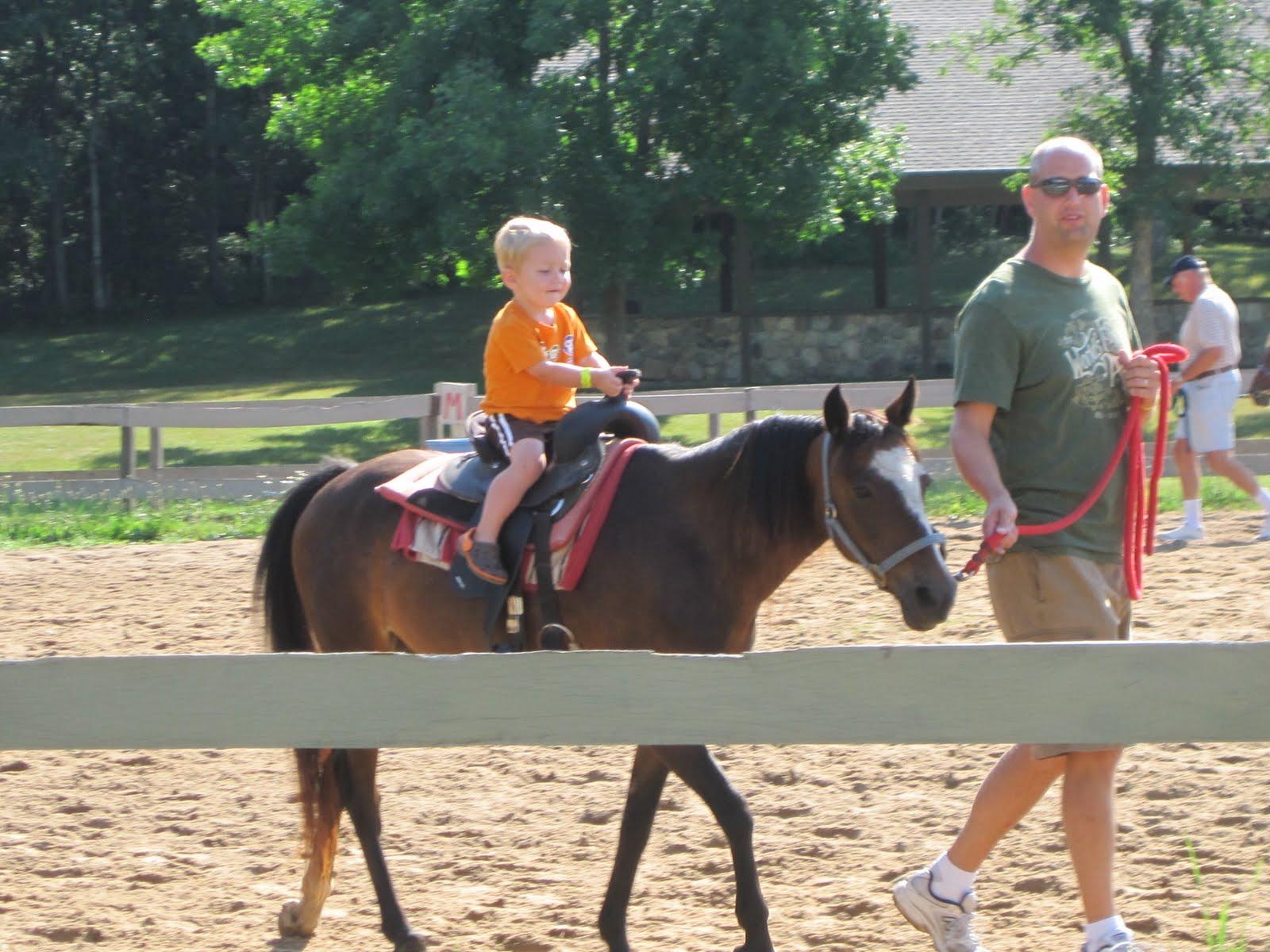 matthew liked his pony ride