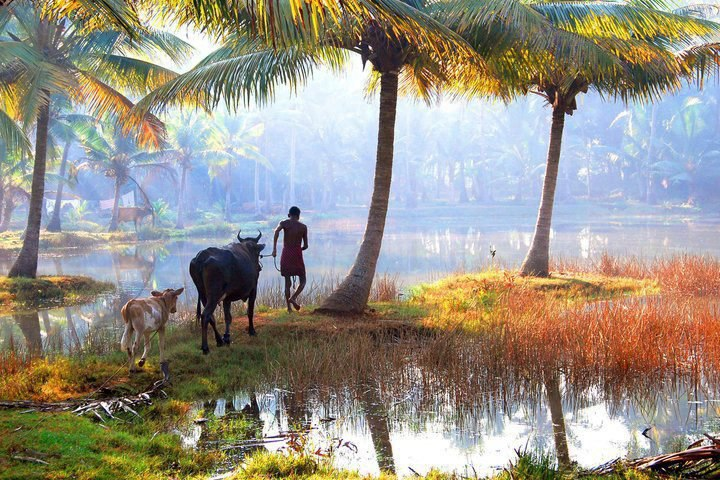 Urgam Village Tourism 2021 - Famous Places, Things to Do