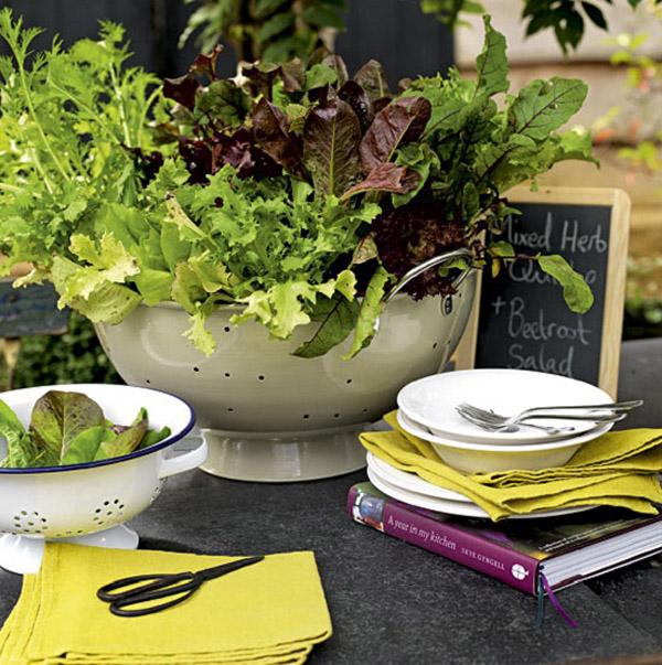 huerto en macetas - ensaladera sobre la mesa- kitchen-garden
