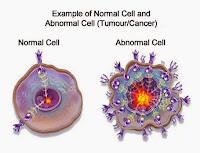 Cara Mengobati Penyakit Tumor