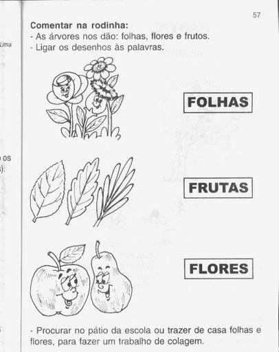 Ciências – Atividades Sobre As Plantas — Atividades Sobre As Plantas ~ Plantas De Jardim Horta E Pomar