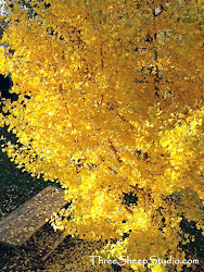 ~ Golden Gingko Tree ~