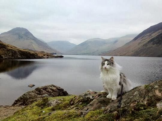lake district wasdale