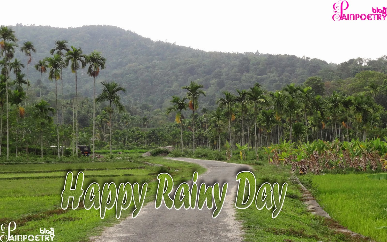 Happy-Rainy-Day-Wallpaper-Image-Photo-Wide