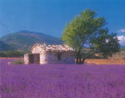 Provence France Most Beautiful Places In France
