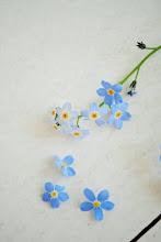 De fineste blå