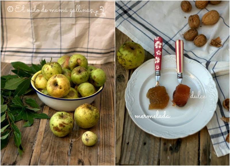 mermelada y dulce de manzana