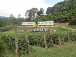 Ebenezer Academy