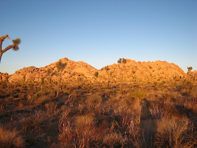 Setting Sun on Mountain Range in Joshua Tree National Park California