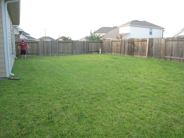 Big Backyard spirals & spatulas: backyard dreams