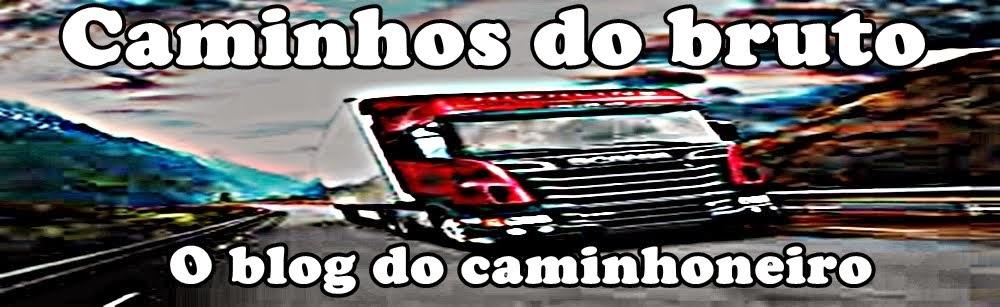 CAMINHOS DO BRUTO