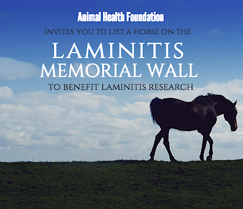Laminitis Memorial Wall invitation Animal Health Foundation