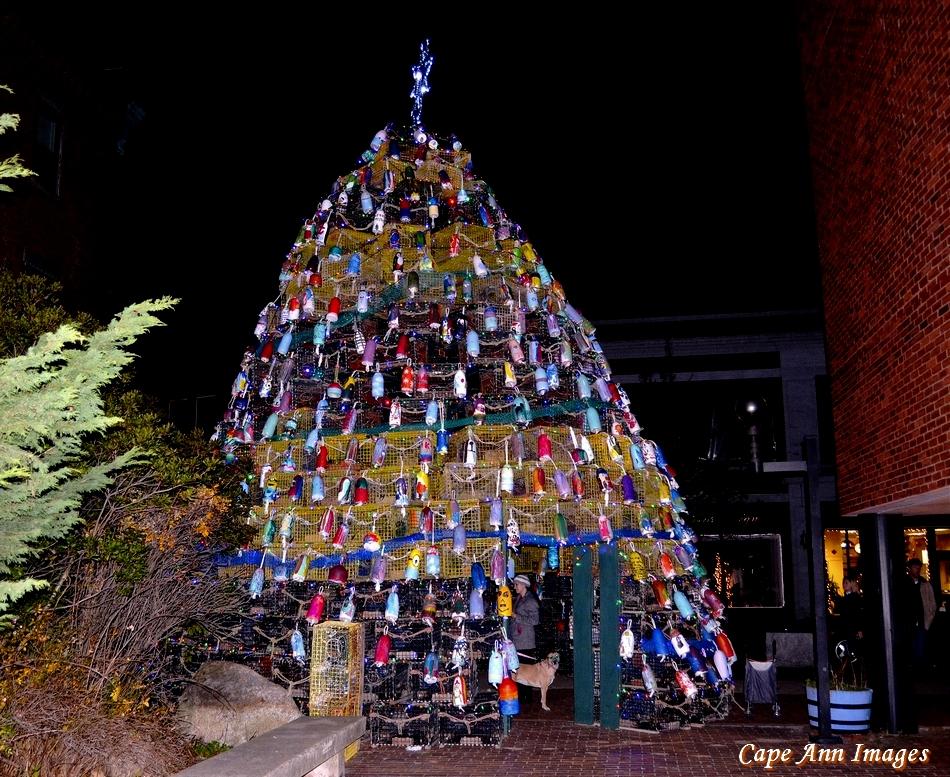 Christmas Tree Augusta Maine