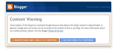 Google wants Bloggers to Enable Warning for Adult Content