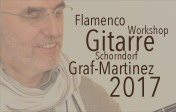 Flamenco-Gitarrenkurs 2016