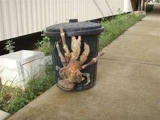 crab1-tm.jpg