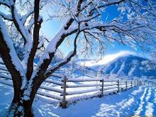 ¡Estamos en invierno!