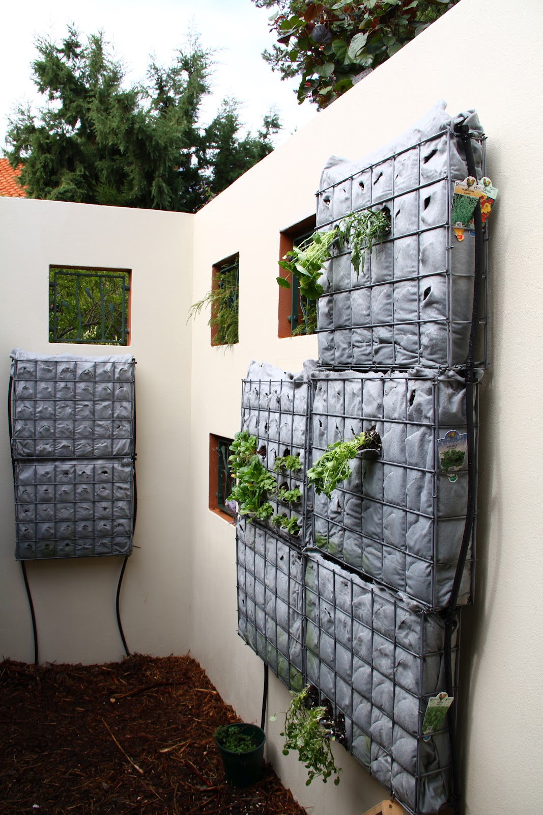 frame this diy vertical garden